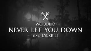 Evgeniy Rei, Woodkid, Lykke Li - Never Let You Down (Woodkid Cover)